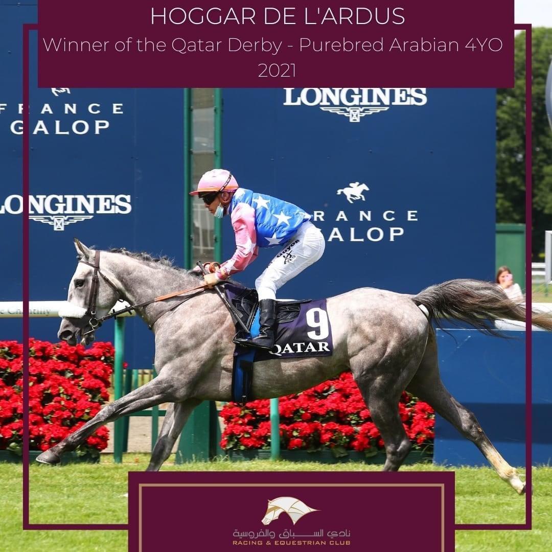 Hoggar De L'Ardus wygrywający w gonitwie Qatar Derby Pur-Sang w Chantilly, fot. Qatar Racing and Equestrian Club
