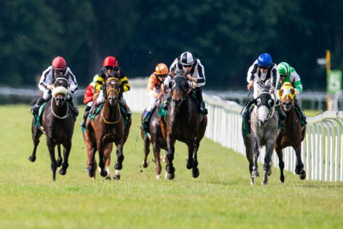Tiwaiq Central European Arabian Derby, by Tor Wyścigów Konnych Służewiec