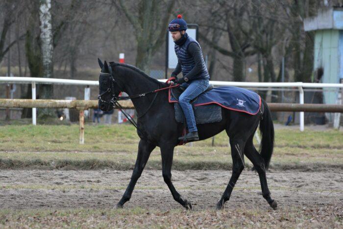 Trainer Maciej Kacprzyk in the saddle, by Agnieszka Kacprzyk