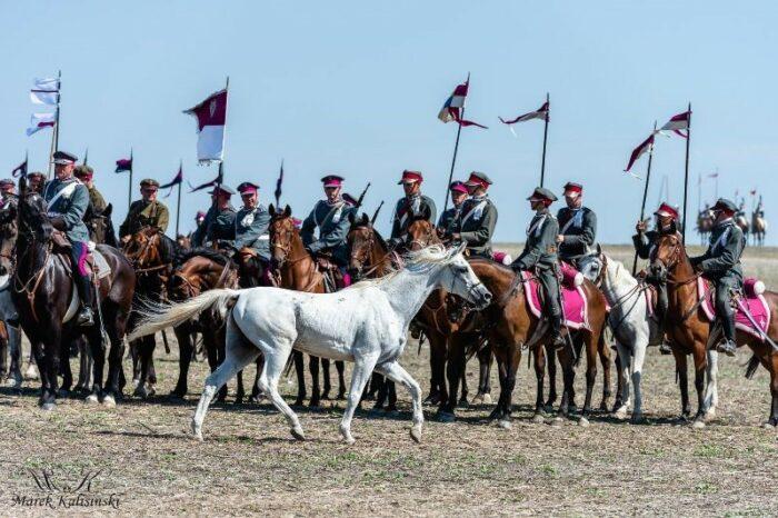 Eten, najdzielniejszy koń Komarowskiej Potrzeby, fot. archiwum